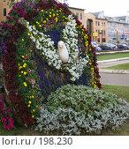 Купить «Дмитров. Цветочная клумба в виде голубя», фото № 198230, снято 27 июля 2007 г. (c) Julia Nelson / Фотобанк Лори