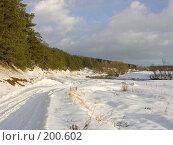 Купить «Сосны, дорога, зима», фото № 200602, снято 3 февраля 2008 г. (c) Сергей Самсонов / Фотобанк Лори