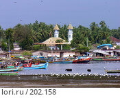 Купить «Индийские рыбацкие лодки и белые цапли на фоне местного храма», фото № 202158, снято 12 ноября 2004 г. (c) Марина Бандуркина / Фотобанк Лори