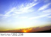 Купить «День и ночь», фото № 202238, снято 24 августа 2007 г. (c) Анатолий Теребенин / Фотобанк Лори