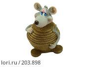Купить «Денежная мышь», фото № 203898, снято 16 февраля 2008 г. (c) Муратов Андрей Анатольевич / Фотобанк Лори