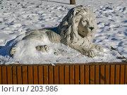 Купить «Парковая скульптура. Лев.», фото № 203986, снято 16 февраля 2008 г. (c) Николай Коржов / Фотобанк Лори