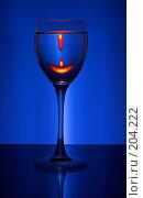 Купить «Бокал вина», фото № 204222, снято 27 апреля 2018 г. (c) Михаил Котов / Фотобанк Лори