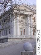 Купить «Елагин дворец. Санкт-Петербург», фото № 205962, снято 16 февраля 2008 г. (c) Марина Дмитриевых / Фотобанк Лори