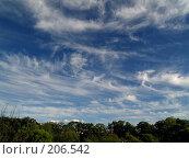 Купить «Летние облака», фото № 206542, снято 21 июня 2007 г. (c) Олег Рубик / Фотобанк Лори