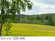 Купить «Русские просторы», фото № 208446, снято 16 июня 2006 г. (c) Александр Буровцев / Фотобанк Лори