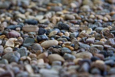 Купить «Камни, галька разной формы и цвета», фото № 212186, снято 25 мая 2018 г. (c) Баевский Дмитрий / Фотобанк Лори