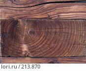 Купить «Фактура дерева», фото № 213870, снято 24 февраля 2008 г. (c) Liseykina / Фотобанк Лори