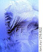 Купить «Ледяной узор», фото № 216822, снято 21 ноября 2018 г. (c) ElenArt / Фотобанк Лори