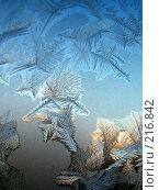 Купить «Морозный узор», фото № 216842, снято 19 сентября 2018 г. (c) ElenArt / Фотобанк Лори