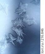 Купить «Морозный узор», фото № 216846, снято 21 ноября 2018 г. (c) ElenArt / Фотобанк Лори