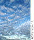 Купить «Голубое небо», фото № 217918, снято 27 февраля 2020 г. (c) ElenArt / Фотобанк Лори