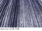 Купить «Деревянная текстура», фото № 218130, снято 20 февраля 2020 г. (c) ElenArt / Фотобанк Лори