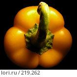 Перец болгарский желтый крупно. Стоковое фото, фотограф lana1501 / Фотобанк Лори