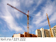 Купить «Строительные краны», фото № 221222, снято 20 августа 2007 г. (c) Евгений Батраков / Фотобанк Лори