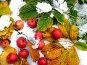 Яблоки на снегу, эксклюзивное фото № 221398, снято 17 октября 2007 г. (c) Наталья Волкова / Фотобанк Лори