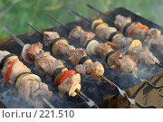 Купить «Шашлыки на мангале», фото № 221510, снято 22 июля 2007 г. (c) Илья Лиманов / Фотобанк Лори