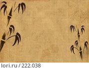 Купить «Фон - лист старой бумаги с изображением бамбука», иллюстрация № 222038 (c) Лукиянова Наталья / Фотобанк Лори