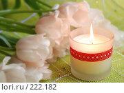 Купить «Свеча и тюльпаны», фото № 222182, снято 11 марта 2008 г. (c) Лифанцева Елена / Фотобанк Лори
