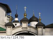 Купить «Дмитров. Позолоченные главки над вратами Борисоглебского монастыря», фото № 224786, снято 11 марта 2008 г. (c) Julia Nelson / Фотобанк Лори
