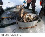Купить «Путина», фото № 225810, снято 14 марта 2008 г. (c) Кондратьев Игорь Витальевич / Фотобанк Лори