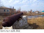 Старинная пушка на фоне деревенского пейзажа в Старочеркасске (2008 год). Стоковое фото, фотограф Борис Панасюк / Фотобанк Лори