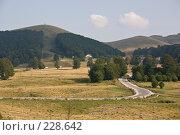 Купить «Холмистый сельский пейзаж и дорога извивающаяся между деревьями», фото № 228642, снято 19 августа 2007 г. (c) Harry / Фотобанк Лори
