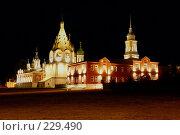Купить «Кремль», фото № 229490, снято 8 декабря 2018 г. (c) Смирнова Лидия / Фотобанк Лори