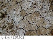 Купить «Потрескавшаяся земля», фото № 230602, снято 25 марта 2007 г. (c) Синицын Андрей / Фотобанк Лори