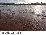 Купить «Санкт-Петербург, наводнение», фото № 231334, снято 3 февраля 2008 г. (c) Андрюхина Анастасия / Фотобанк Лори
