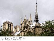 Купить «Собор Парижской Богоматери», фото № 233014, снято 7 мая 2007 г. (c) Юлия Кузнецова / Фотобанк Лори