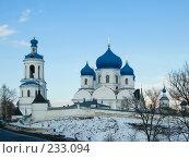 Купить «Боголюбовский женский монастырь», фото № 233094, снято 21 марта 2008 г. (c) Яков Филимонов / Фотобанк Лори