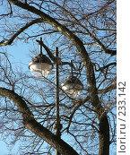 Купить «Фонарь», фото № 233142, снято 26 февраля 2008 г. (c) Бяков Вячеслав / Фотобанк Лори