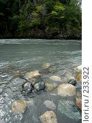 Купить «Абхазия. горная река», фото № 233922, снято 25 июля 2005 г. (c) Виктор Филиппович Погонцев / Фотобанк Лори