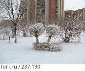 Купить «Город Краснокаменск, снег», фото № 237190, снято 23 марта 2008 г. (c) Геннадий Соловьев / Фотобанк Лори