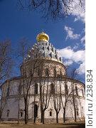 Купить «Истра. Воскресенский собор Ново-Иерусалимского монастыря. Западный фасад», фото № 238834, снято 29 марта 2008 г. (c) Julia Nelson / Фотобанк Лори