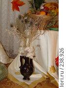 Купить «Кувшин с хлопком», фото № 238926, снято 15 ноября 2005 г. (c) Вадим Лигай / Фотобанк Лори