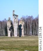 Купить «Латвия. Саласпилс. Мемориал - Солидарность», фото № 239134, снято 29 марта 2008 г. (c) maruta bekina / Фотобанк Лори