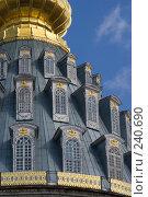 Купить «Истра. Воскресенский собор Ново-Иерусалимского монастыря. Купол. Вид с запада», фото № 240690, снято 29 марта 2008 г. (c) Julia Nelson / Фотобанк Лори
