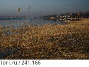 Весна на озере. Стоковое фото, фотограф Андрей Явнашан / Фотобанк Лори