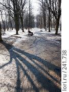 Купить «Аллея, в парке», фото № 241738, снято 31 марта 2008 г. (c) Андрюхина Анастасия / Фотобанк Лори