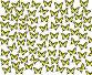 82 бабочки на белом фоне, фото № 242274, снято 28 марта 2017 г. (c) Коннов Леонид Петрович / Фотобанк Лори