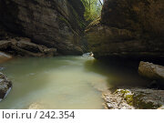 Купить «Республика Адыгея. Гуамское ущелье», фото № 242354, снято 1 мая 2006 г. (c) Виктор Филиппович Погонцев / Фотобанк Лори