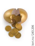 Купить «Деньги, выпадающие из золотого яичка», фото № 243206, снято 24 февраля 2019 г. (c) Harry / Фотобанк Лори