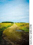 Купить «Дорога», фото № 243378, снято 29 августа 2007 г. (c) Валерия Потапова / Фотобанк Лори