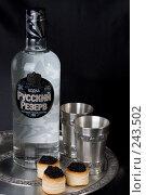 Купить «Натюрморт с бутылкой водки Русский Резерв», фото № 243502, снято 1 марта 2008 г. (c) Harry / Фотобанк Лори