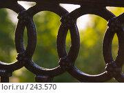 Купить «Фрагменты чугунной старинной ограды», фото № 243570, снято 2 июня 2007 г. (c) Harry / Фотобанк Лори