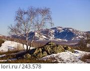 Купить «Ранняя весна на Южном Урале», фото № 243578, снято 1 апреля 2007 г. (c) Евгений Прокофьев / Фотобанк Лори