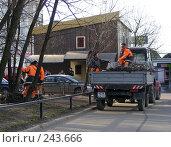 Купить «Москва. Уборка мусора. Обрезка деревьев», эксклюзивное фото № 243666, снято 3 апреля 2008 г. (c) lana1501 / Фотобанк Лори