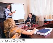 Купить «Деловая презентация», фото № 243670, снято 28 августа 2007 г. (c) Сергей Байков / Фотобанк Лори